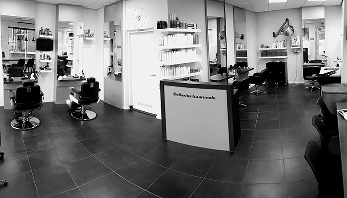 cellarius-salon-pano